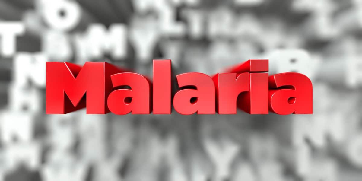 Malaria – tropikalne niebezpieczeństwo